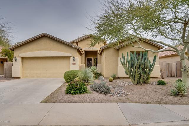 4294 E Cherry Hills Drive, Chandler, AZ 85249 (MLS #5893131) :: Yost Realty Group at RE/MAX Casa Grande