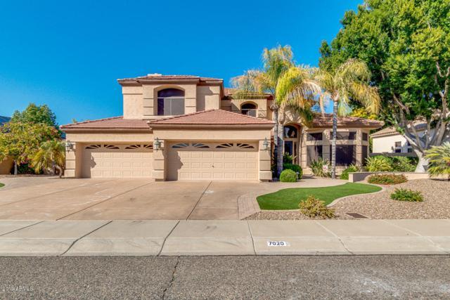 7020 W Firebird Drive, Glendale, AZ 85308 (MLS #5893139) :: RE/MAX Excalibur