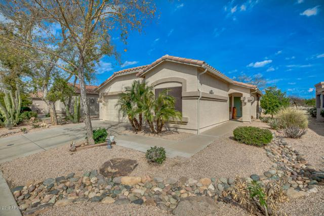 5023 S Lantana Lane, Gilbert, AZ 85298 (MLS #5893212) :: CC & Co. Real Estate Team