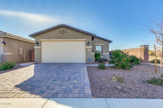 41976 N Cypress Street, San Tan Valley, AZ 85140 (MLS #5893231) :: CC & Co. Real Estate Team