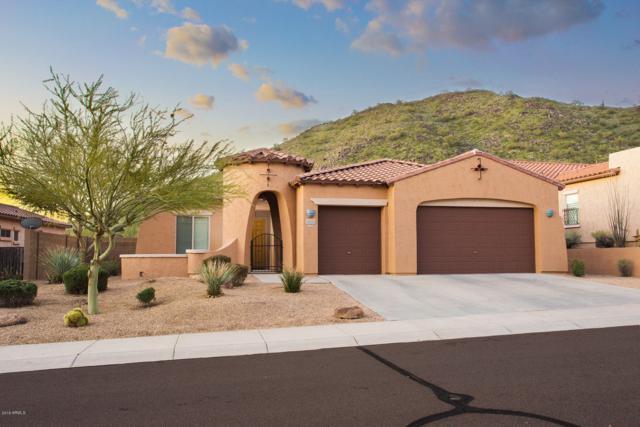 8343 W Antelope Drive, Peoria, AZ 85383 (MLS #5893236) :: The Laughton Team