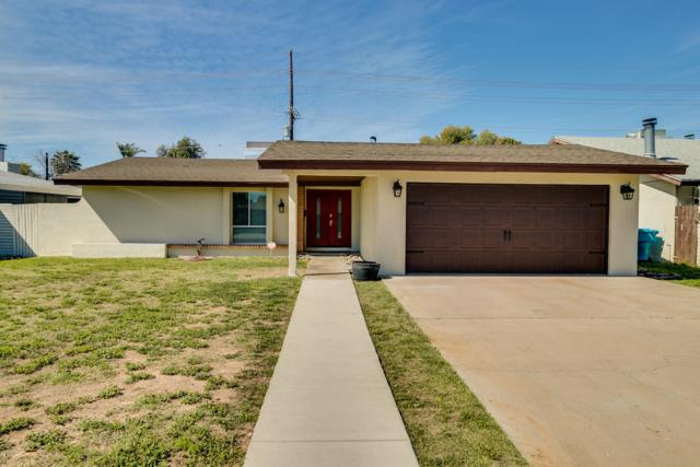 7042 N 23rd Avenue, Phoenix, AZ 85021 (MLS #5893256) :: Yost Realty Group at RE/MAX Casa Grande