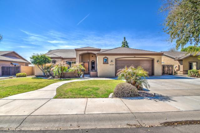 20449 E Appaloosa Drive, Queen Creek, AZ 85142 (MLS #5893317) :: CC & Co. Real Estate Team