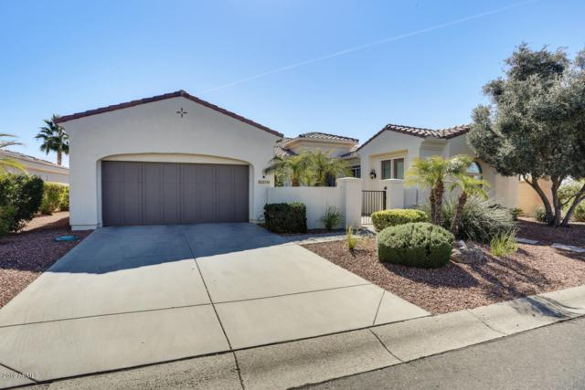 23109 N Hank Raymond Drive, Sun City West, AZ 85375 (MLS #5893420) :: CC & Co. Real Estate Team