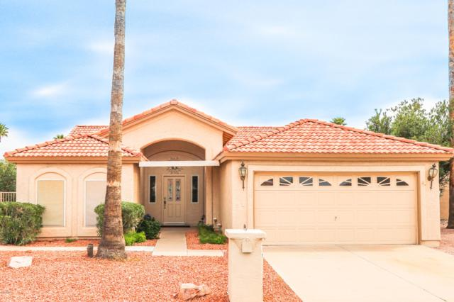 24619 S Rosewood Drive, Sun Lakes, AZ 85248 (MLS #5893438) :: Occasio Realty
