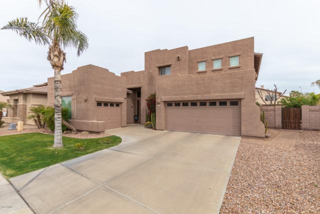 3128 E La Costa Place, Chandler, AZ 85249 (MLS #5893504) :: Yost Realty Group at RE/MAX Casa Grande