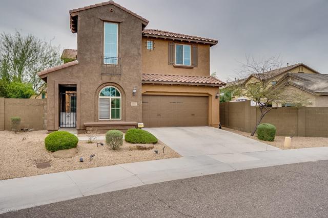 3603 E Salter Drive, Phoenix, AZ 85050 (MLS #5893522) :: Occasio Realty