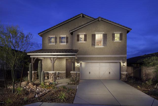 2922 W Laredo Lane, Phoenix, AZ 85085 (MLS #5893523) :: CC & Co. Real Estate Team