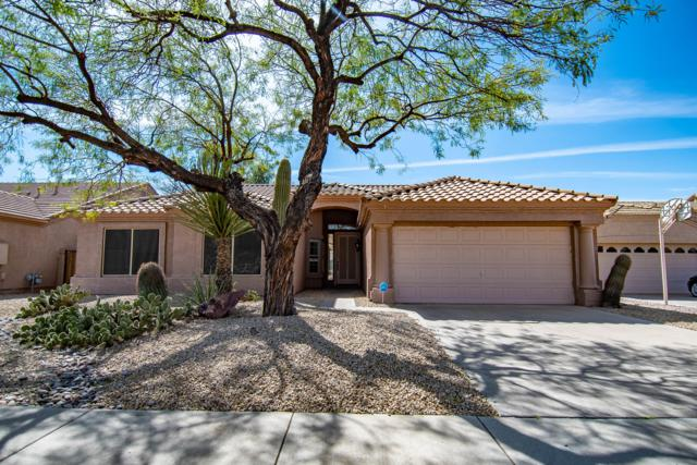 4615 E Rowel Road, Phoenix, AZ 85050 (MLS #5893530) :: The Wehner Group