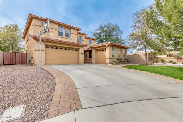 1645 W Pelican Court, Chandler, AZ 85286 (MLS #5893533) :: Yost Realty Group at RE/MAX Casa Grande