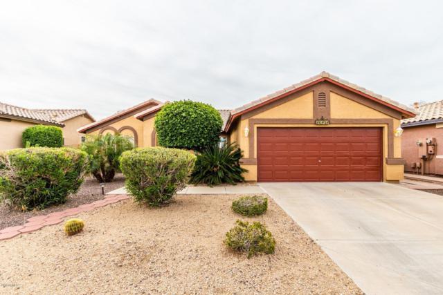 16101 W Maricopa Street, Goodyear, AZ 85338 (MLS #5893600) :: Yost Realty Group at RE/MAX Casa Grande