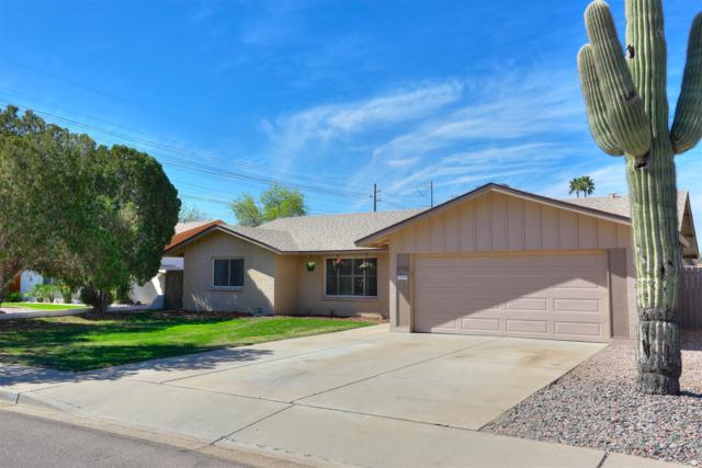 6910 S Lakeshore Drive, Tempe, AZ 85283 (MLS #5893615) :: Yost Realty Group at RE/MAX Casa Grande