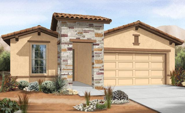 11562 W Lone Tree Trail, Peoria, AZ 85383 (MLS #5893621) :: The Laughton Team