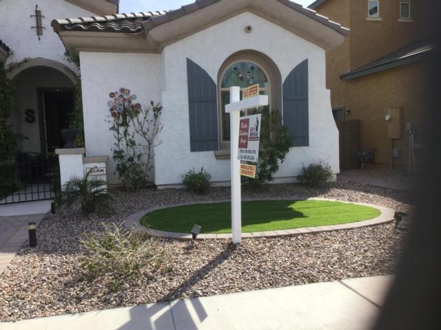 1961 E Horseshoe Drive, Chandler, AZ 85249 (MLS #5893662) :: Yost Realty Group at RE/MAX Casa Grande