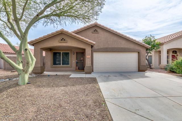 7201 W Mohawk Lane, Glendale, AZ 85308 (MLS #5893670) :: Yost Realty Group at RE/MAX Casa Grande
