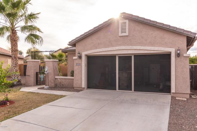 20568 N 261ST Court, Buckeye, AZ 85396 (MLS #5893671) :: Yost Realty Group at RE/MAX Casa Grande