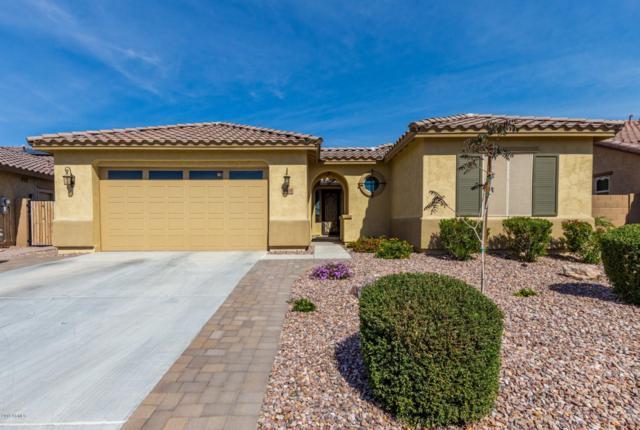 19630 W Grant Street, Buckeye, AZ 85326 (MLS #5893706) :: Yost Realty Group at RE/MAX Casa Grande