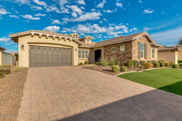 12869 N 153RD Lane, Surprise, AZ 85379 (MLS #5893789) :: Santizo Realty Group