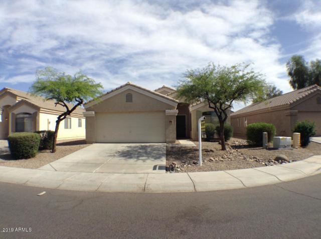 10614 W Nez Perce Street, Tolleson, AZ 85353 (MLS #5893804) :: Occasio Realty
