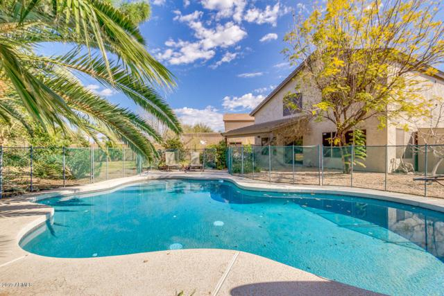 1172 N San Benito Drive, Gilbert, AZ 85234 (MLS #5893813) :: Occasio Realty