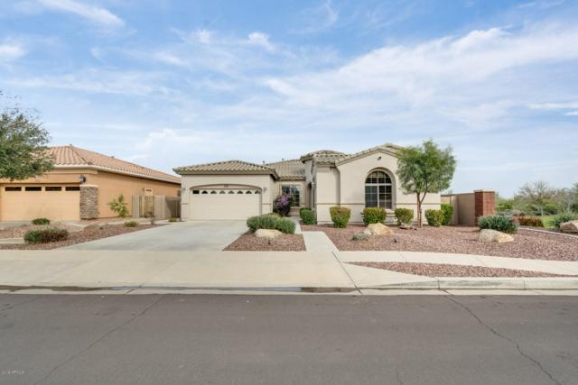 5031 N 191ST Drive, Litchfield Park, AZ 85340 (MLS #5893830) :: The Results Group