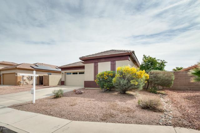 24757 W Dove Lane, Buckeye, AZ 85326 (MLS #5893834) :: Yost Realty Group at RE/MAX Casa Grande