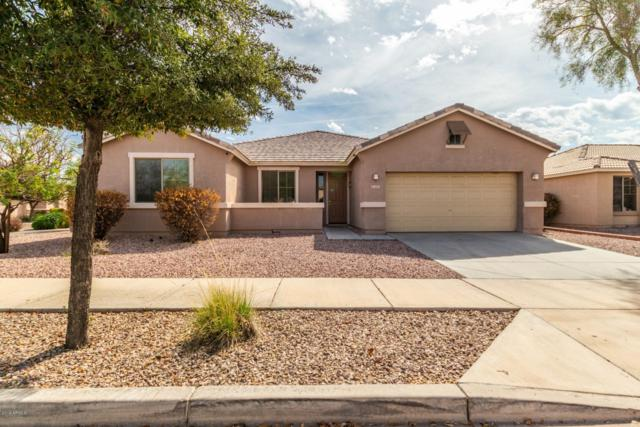2517 W Apollo Road, Phoenix, AZ 85041 (MLS #5893848) :: Yost Realty Group at RE/MAX Casa Grande