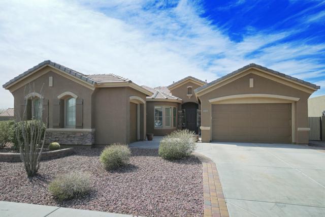 38540 N Vista Hills Court, Anthem, AZ 85086 (MLS #5893887) :: Yost Realty Group at RE/MAX Casa Grande