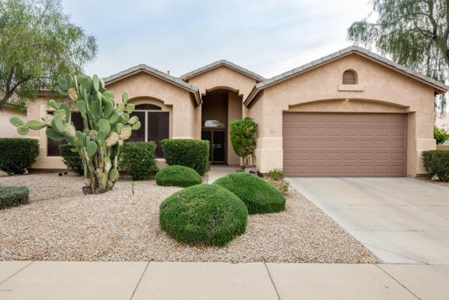 21535 N 74TH Way, Scottsdale, AZ 85255 (MLS #5893896) :: Yost Realty Group at RE/MAX Casa Grande