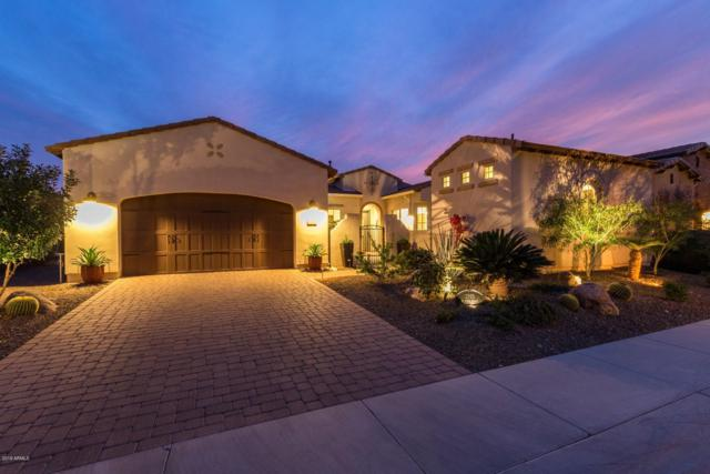 1595 E Atole Place, San Tan Valley, AZ 85140 (MLS #5893938) :: Yost Realty Group at RE/MAX Casa Grande