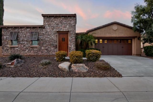 27546 N Cardinal Lane, Peoria, AZ 85383 (MLS #5893959) :: Conway Real Estate