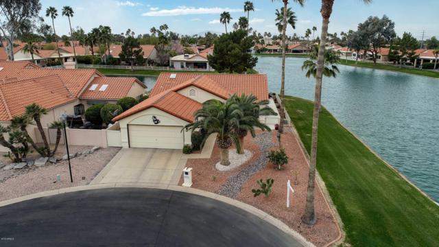 25232 S Drifter Drive, Sun Lakes, AZ 85248 (MLS #5894009) :: Yost Realty Group at RE/MAX Casa Grande