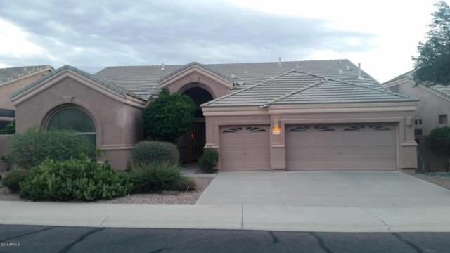 9719 E Voltaire Drive, Scottsdale, AZ 85260 (MLS #5894039) :: Yost Realty Group at RE/MAX Casa Grande