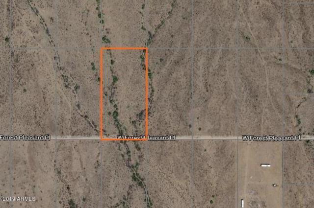 0 W Forrest Pleasant Place, Wittmann, AZ 85361 (MLS #5894052) :: Riddle Realty Group - Keller Williams Arizona Realty