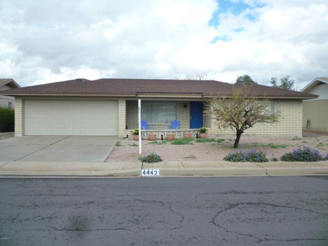 4442 E Edgewood Avenue, Mesa, AZ 85206 (MLS #5894059) :: Yost Realty Group at RE/MAX Casa Grande