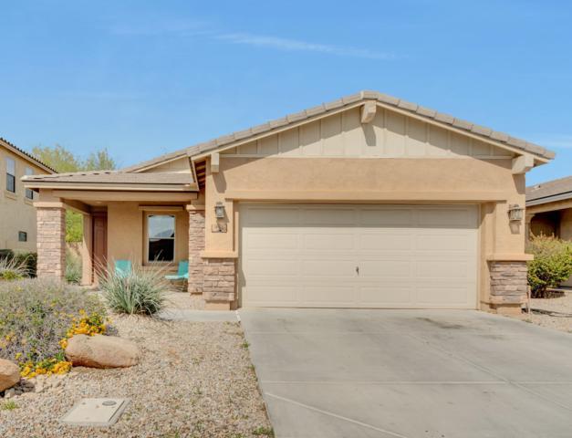 952 E Jacob Street, Chandler, AZ 85225 (MLS #5894069) :: Occasio Realty