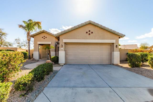 2 N 123RD Drive, Avondale, AZ 85323 (MLS #5894087) :: Occasio Realty