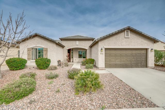 6630 W Desert Blossom Way, Florence, AZ 85132 (MLS #5894155) :: Conway Real Estate