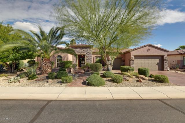 20903 N Barberry Lane, Surprise, AZ 85387 (MLS #5894192) :: Revelation Real Estate