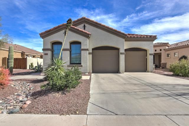 6845 S Pinehurst Drive, Gilbert, AZ 85298 (MLS #5894237) :: Team Wilson Real Estate
