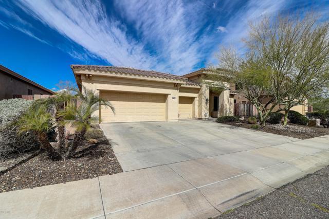 2428 W Andrea Drive, Phoenix, AZ 85085 (MLS #5894283) :: Yost Realty Group at RE/MAX Casa Grande