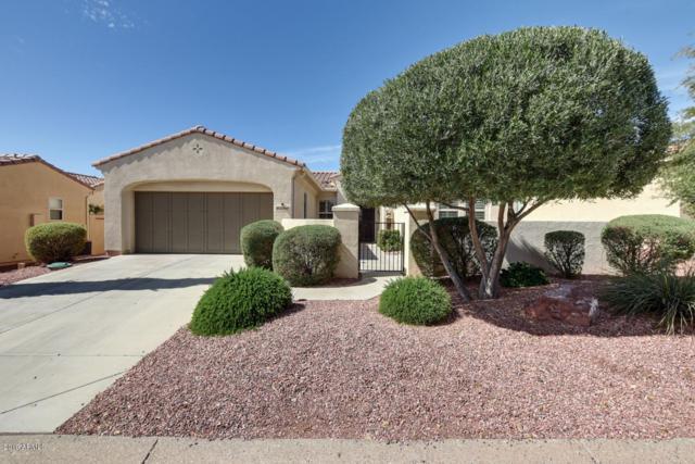 22818 N Arrellaga Drive, Sun City West, AZ 85375 (MLS #5894345) :: CC & Co. Real Estate Team