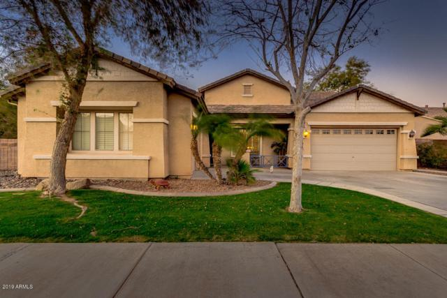 19154 E Mockingbird Drive, Queen Creek, AZ 85142 (MLS #5894347) :: Occasio Realty