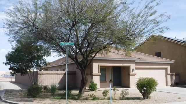 39517 N Carolina Avenue, San Tan Valley, AZ 85140 (MLS #5894429) :: CC & Co. Real Estate Team