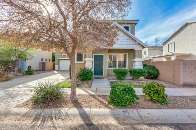 1214 S 120TH Drive, Avondale, AZ 85323 (MLS #5894458) :: Yost Realty Group at RE/MAX Casa Grande