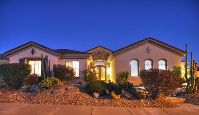 41717 N Club Pointe Drive N, Phoenix, AZ 85086 (MLS #5894461) :: The Laughton Team
