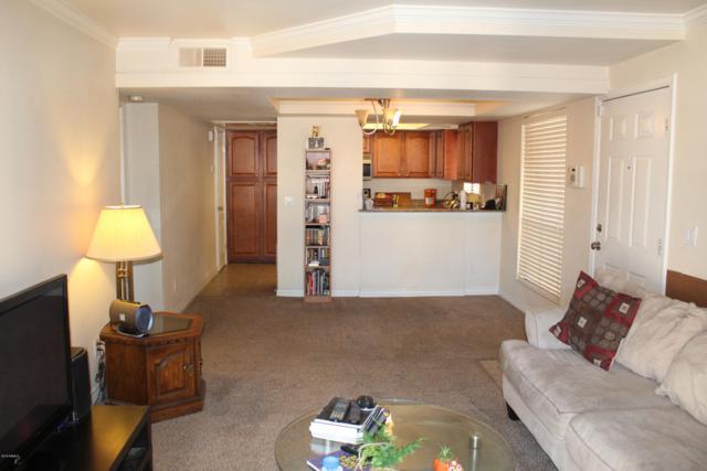 3405 W Danbury Drive D214, Phoenix, AZ 85053 (MLS #5894484) :: The W Group