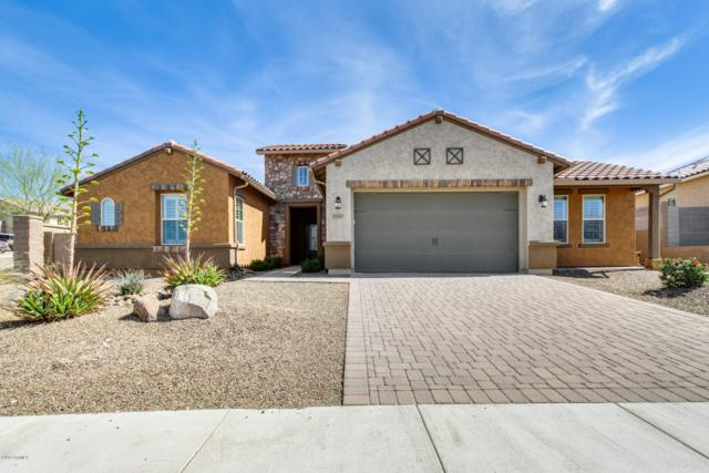 28065 N 100TH Lane, Peoria, AZ 85383 (MLS #5894502) :: RE/MAX Excalibur