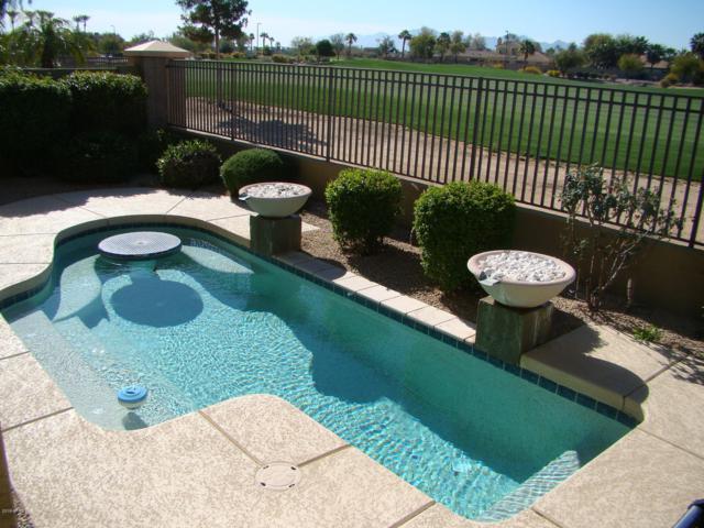 14289 W Harvard Street, Goodyear, AZ 85395 (MLS #5894515) :: CC & Co. Real Estate Team
