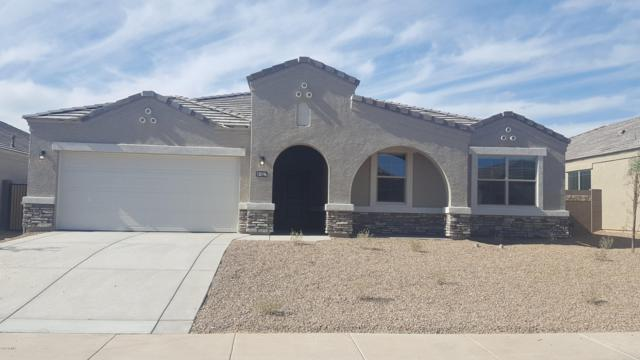 30020 W Fairmount Avenue, Buckeye, AZ 85396 (MLS #5894522) :: Santizo Realty Group
